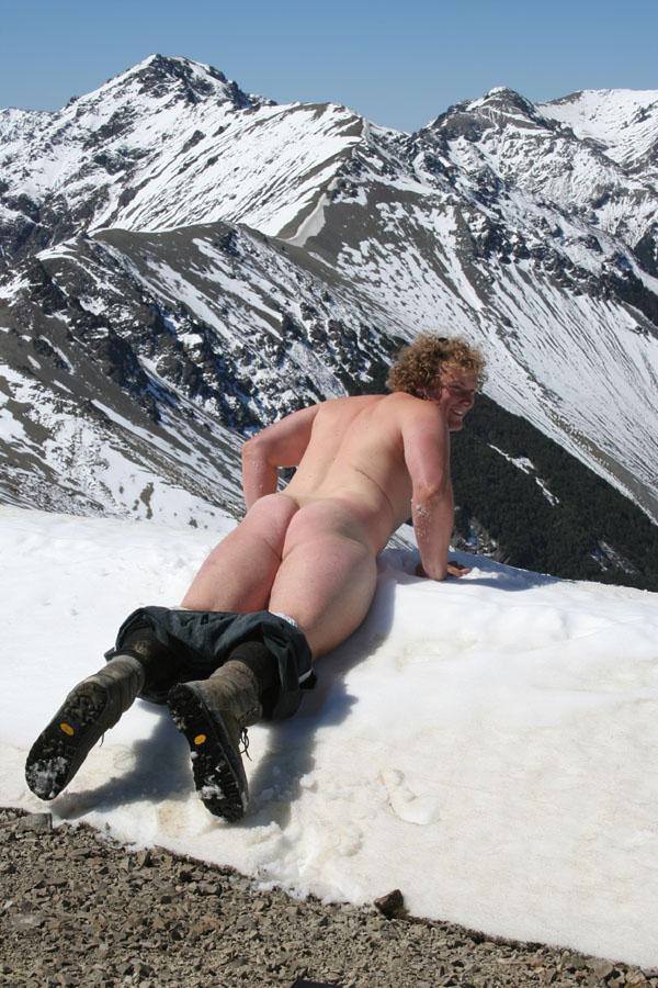 Polar bear on the Summit of Plimminom
