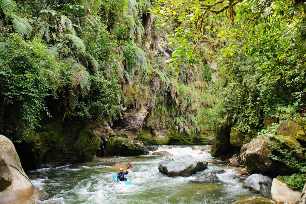 Seth in the Jondachi Jungle