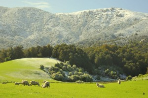 Snow on the approach to the Waikaia Valley
