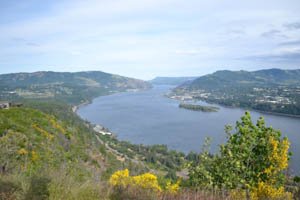 Overlooking the Columbia River Gorge from the Washington side.