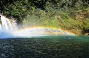 AG Micos Rainbow by EA 1