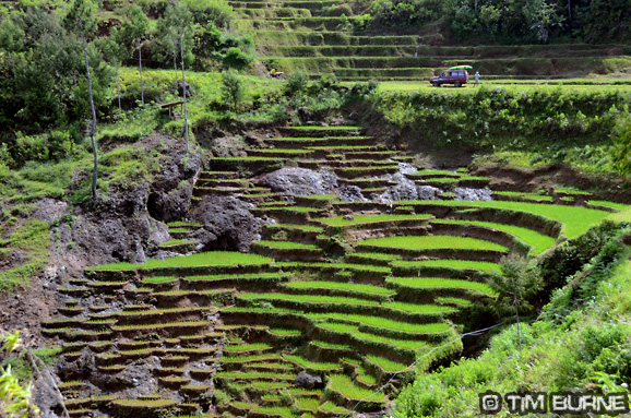 Impressive terraced paddy fields on the drive to the rafting run